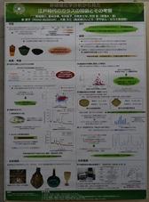 「非破壊化学分析から見た江戸時代のガラスの特徴とその考察」